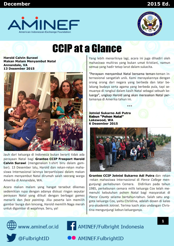 CCIP At A Glance Dec 2015