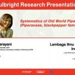 Web banner FRP Rani